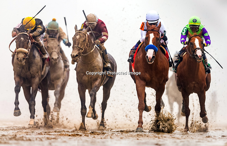 Justify (Scat Daddy) wins the Preakness Stakes at Pimlico on 5.19.2018. Mike Smith up, Bob Baffert trainer, China horse club, Winstar Farm and Head of Plains Partners owners.