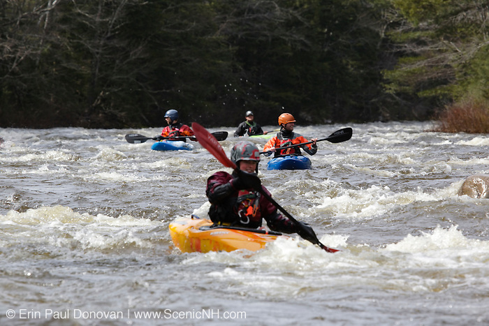 Kayaking along the Swift River after a heavy spring rain storm. This river travels along side of the Kancamagus Highway (route 112) in the White Mountains, New Hampshire USA making it easy access for kayakers