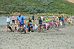 NELSON, NEW ZEALAND Febuary 16: Sport Tasman Marlborough Muddy Buddy Run 16.2.19 at Havelock Febuary 16 2019, Nelson, New Zealand (Photos by Barry Whitnall/Shuttersport Limited)