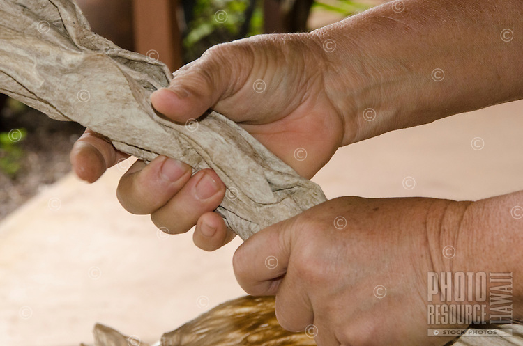 A close-up view of kapa-maker Roen Hufford crumpling beaten paper mulberry bark by hand to further soften it before the color-dying process, Big Island.