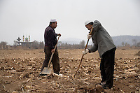 Farmers prepare fields for planting outside Linxia, Gansu Province, China.