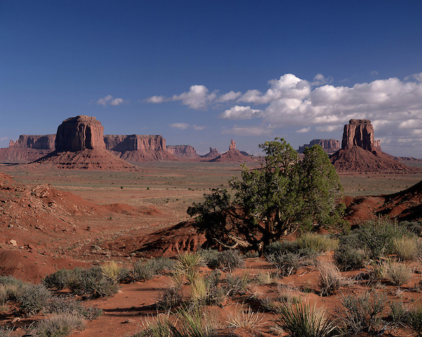 View from Artist's Point in Monument Valley, Navajo Tribal Park, Arizona, USA . John offers private photo tours in Monument Valley and throughout Arizona, Utah and Colorado. Year-round.