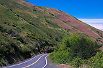 Descending Wawawai Canyon from Pullman, WA, the Wawawai road connects the Palouse area to the Snake River canyon and accesses recreation areas above Little Goose Damn.