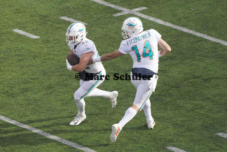 quarterback Ryan Fitzpatrick (14) of the Miami Dolphins gibt den Ball an running back Patrick Laird (42) of the Miami Dolphins - 08.12.2019: New York Jets vs. Miami Dolphins, MetLife Stadium New York