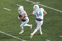 quarterback Ryan Fitzpatrick (14) of the Miami Dolphins gibt den Ball an running back Patrick Laird (42) of the Miami Dolphins - 08.12.2019: New York Jets vs. Miami Dolphins, MetLife Stadium New York