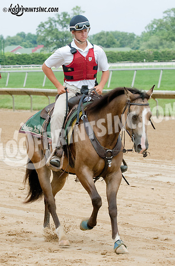 Colby Lavergne before The Stymie Stakes at Delaware Park on 7/11/13