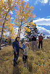A family of five hiking amidst fall color enjoying the afternoon in Rocky Mtn Nat'l Park, CO.