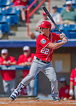 29 February 2016: Washington Nationals outfielder Logan Schafer in action during an inter-squad pre-season Spring Training game at Space Coast Stadium in Viera, Florida. Mandatory Credit: Ed Wolfstein Photo *** RAW (NEF) Image File Available ***