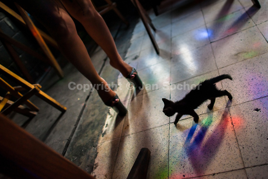 A pet kitten walks next to a sex worker wearing high heels shoes in a sex club in San Salvador, El Salvador, 13 November 2016. Sex workers' task in the club is to be an entertaining and seductive companion. Performing erotic dance on the pole they make the customers stay as long as possible and buy relatively expensive alcoholic beverages from which they have a certain share. Sex workers are not obliged to have sexual intercourse with the club customers, they decide themselves, usually according to their current economic situation.