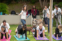The Occidental College Student Wellness Advisory Council, Sleep Week, Emmons Wellness Center and Active Minds presents Goat Yoga on the lawn between Herrick Chapel and the Academics Common on March 28, 2019. The goat yoga classes were held by Hello Critter and their instructors, who led Nigerian Dwarf goats throughout the space while students did yoga.<br /> (Photo by Marc Campos, Occidental College Photographer)