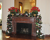 "Washington, DC - December 3, 2008 -- One of the East Room mantels adorned with green garland with red, and blue beads and silver stars  during a media preview of the 2008 holiday decorations and tasting event on the State Floor of the White House in Washington, D.C. on Wednesday, December 3, 2008.  The theme of this years decorations is ""a Red, White, and Blue Christmas""..Credit: Ron Sachs / CNP"
