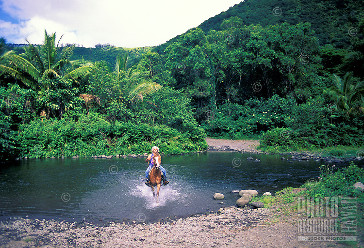 A guide for horseback tours through Waipio Valley splashes through stream.