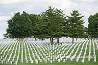 65095-01809 Flags on Memorial Day at Jefferson Barracks National Cemetery, St Louis, MO