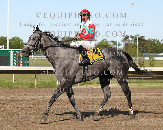 Silverette #4 with Paco Lopez riding won the $60,000 Red Cross Stakes at Monmouth Park in Oceanport, N.J. on Monday May 27, 2013.  Photo By Bill Denver/EQUI-PHOTO