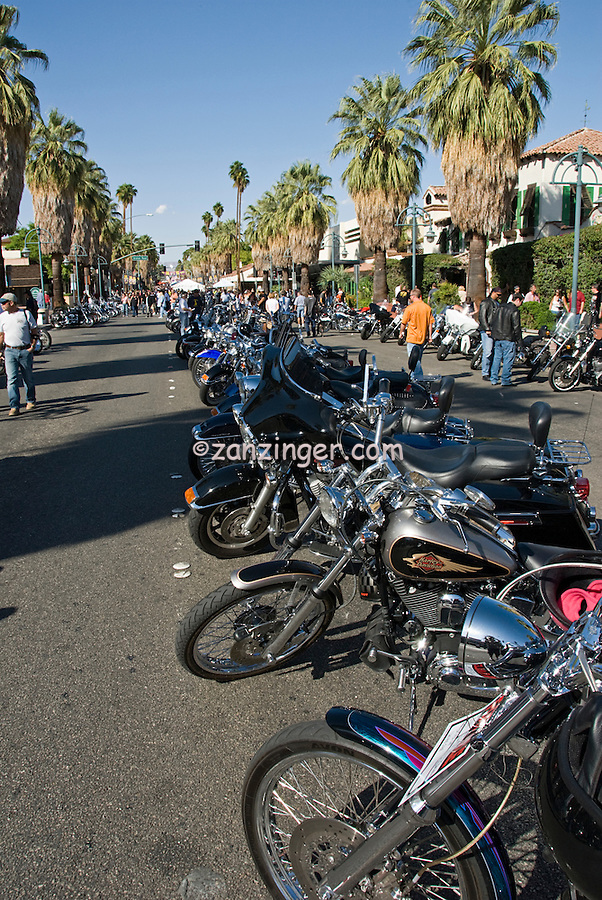 "Harley Davidson HOG Buell Motorcycle ""Harley"" Vertical, Parked, Lined Up, Palm Canyon, Drive, awesome"