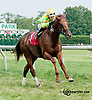 Mega Boom winning at Delaware Park on 8/17/13