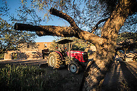 Tractor para la siembra del campo en  Rancho El Pe&ntilde;asco. <br /> &copy;Foto: LuisGutierrrez/NortePhoto