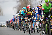 Philippe Gilbert (BEL/Quick Step floors) in the peloton<br /> <br /> 69th Kuurne-Brussel-Kuurne 2017 (1.HC)