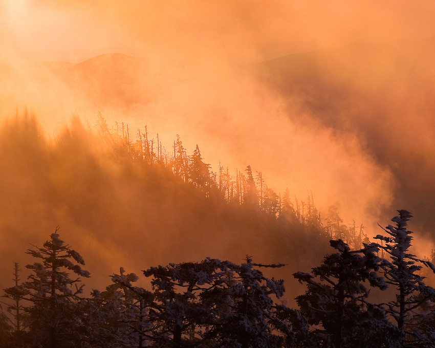 """""""SUNSET FIRE"""" -- Fresh snow and a fiery sunset at Clingmans Dome in Great Smoky Mountains National Park. The park is located on the border of North Carolina and Tennessee in the southern Appalachian mountains."""