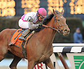Aqueduct 3-2-2013 - Vyjack wins Gotham, plus other stakes