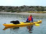 Sea otter on kayak at Elkhorn Slough
