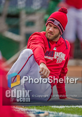5 April 2014: Washington Nationals outfielder Bryce Harper stretches out on a cool afternoon prior to facing the Atlanta Braves at Nationals Park in Washington, DC. The Braves defeated the Nationals 6-2 to take the second game of their 3-game series. Mandatory Credit: Ed Wolfstein Photo *** RAW (NEF) Image File Available ***