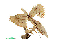 Detail of Origami model.<br /> Archaeopteryx designed by Stefano Bachis, folded by Alfred Kwan<br /> Hatchlings designed by Paul Frasco, folded by Rosalind Joyce<br /> Cracked Dinosaur Egg designed by John Montroll, folded by Alice Fornari<br /> Ferns designed by Yuri Shumakov, folded by Alice Fornari<br /> Lizard designed by Raphael Maillot, folded by Rosalind Joyce