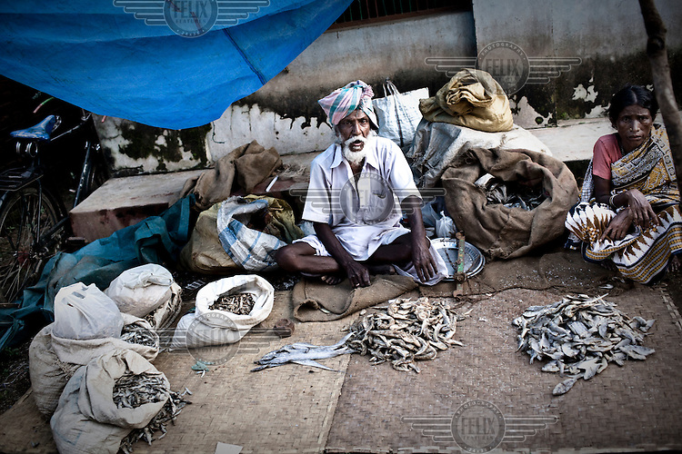 Selling dried fish during the Dongria Kondh tribespeople's annual festival in Lanjigarh.