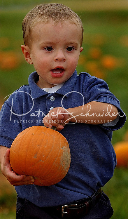 A young boy selects the perfect Halloween pumpkin during his visit to a pumpkin patch in North Carolina.