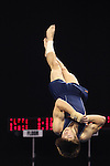 20 APR 2012: Alex Varga of the University of Illinois competes in the during the Division I Men's Gymnastics Championship held at the Lloyd Noble Center on the University of Oklahoma campus in Norman, OK. The University of Illinois team finished in first place with a score of 358.85. Stephen Pingry/NCAA Photos