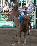 Luke Creasy from Denton, TX competes in the bareback bronc riding event during the Reno Rodeo in Reno, Nevada on Sunday, June 19, 2016.