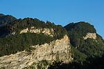 Felswand oberhalb Eggerswald, Balzers, Rheintal, Rhine-valley, Liechtenstein.
