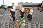 Donnacha Daly, Scartaglin (3rd), Brian Daly, Scartaglin (2nd), Daniel Leahy, Scartaglin (1st) at the Castleisland Mart Calf Show on Saturday