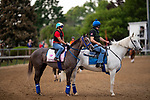 LOUISVILLE, KENTUCKY - MAY 01:Jaywalk prepares for the Kentucky Oaks at Churchill Downs in Louisville, Kentucky on May 01, 2019. Evers/Eclipse Sportswire/CSM