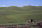 windmills near Altamont Pass