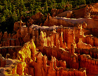 Closeup view of pinnacles at Bryve Canyon National Park, Utah