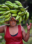 A woman carries bananas through the rain in Mizak, a small village in the south of Haiti.