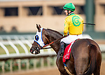 AUG 31: Vasilika with Flavien Prat wins the John C Mabee at Del Mar Thoroughbred Clubb in Del Mar, California on August 31, 2019. Evers/Eclipse Sportswire/CSM