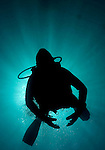 Underwater Photographs. Playa Blanca, Yaiza, Lanzarote..Taken with Rubicon Diving..Copyright photograph: Helen Atkinson +44 7976 265253