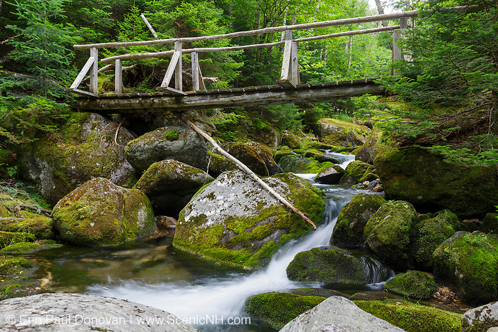 The Sanders Bridge along the Randolph Path in Low and Burbank's Grant, New Hampshire during the summer months. This footbridge crosses Cold Brook.