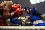 Peter Price (Wales) (RED) Vs. Nikita Tszyu (Aus)(BLUE)- Aus wins 22-11..Boxing - Wales v Australia WABA - 2nd November 2012 - Sophia Gardens - Cardiff - Wales - UK..© www.sportingwales.com- PLEASE CREDIT IAN COOK - SPORTINGWALES