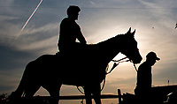 BALTIMORE, MD - MAY 18: Preakness contender Classic Empire heads back from a busy track with Trainer Mark Casse as preparations are in full swing for the Preakness Stakes this Saturday at Pimlico Race Course on May 18, 2017 in Baltimore, Maryland.(Photo by Scott Serio/Eclipse Sportswire/Getty Images)