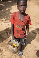 Young Boy Collecting  Cashew Apples and Nuts from the Ground, near Sokone, Senegal.  Fruits must be collected after they fall  to the ground, and not picked from the tree.
