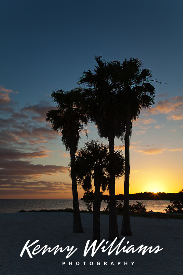 Palm Trees Sunset, Sombrero Beach, Vaca Key, Marathon, Florida Keys