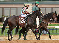 "October 07, 2018 : #13 Jo Jo Air and jockey Julio Garcia in the 1st running of The Indian Summer $200,000 ""Win and You're In Breeders' CupJuvenile Turf Sprint Division"" for trainer Mark Casse and owner John Oxley  at Keeneland Race Course on October 07, 2018 in Lexington, KY.  Candice Chavez/ESW/CSM"