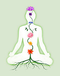 Woman sitting in lotus pose with seven chakra symbols represented as associated with chakras flowers and colors growing from a root chakra isolated on green background