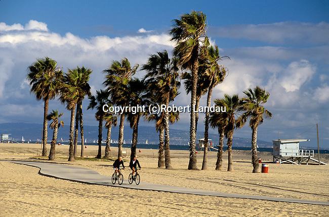 Palm Trees and bike path at Santa Monica Beach
