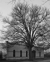 House and Tree<br /> Newstead