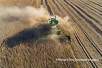 63801-13220 Harvesting soybeans in fall-aerial Marion Co. IL