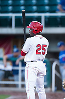 Orem Owlz left fielder Johan Sala (25) at bat during a Pioneer League game against the Ogden Raptors at Home of the OWLZ on August 24, 2018 in Orem, Utah. The Ogden Raptors defeated the Orem Owlz by a score of 13-5. (Zachary Lucy/Four Seam Images)
